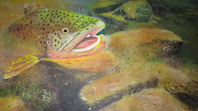 Phthalo Blue Painting - Brown Trout   by Ordy Duker