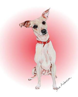 Animal Shelter Drawing - Brownie - A Former Shelter Sweetie by Dave Anderson