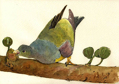 Pigeon Painting - Bruce S Green Pigeon by Juan  Bosco