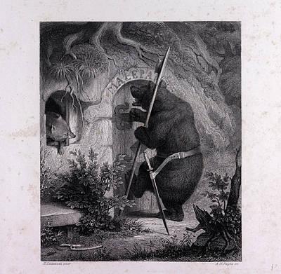 Bruin As Messenger Art Print