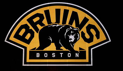 Photograph - Bruins In Boston by Caroline Stella