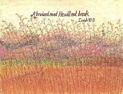 Bruised Reed Art Print by Catherine Saldana