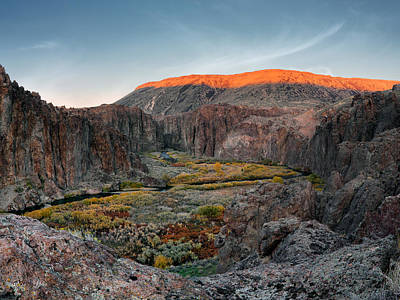 Photograph - Bruneau River And Canyon by Leland D Howard