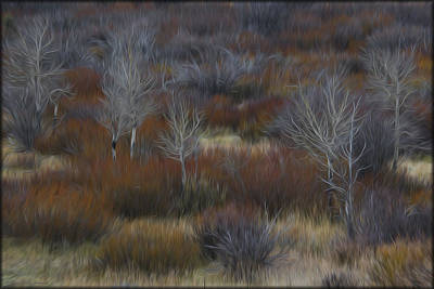 Photograph - Brush In Oils by Erika Fawcett