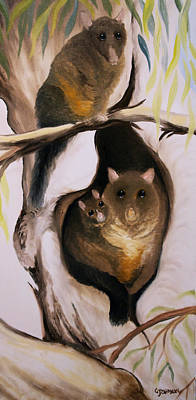Brush Tail Possum Art Print