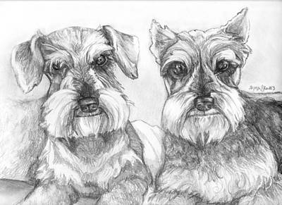 Schnauzer Drawing - Brutus And Susie by Shana Rowe Jackson