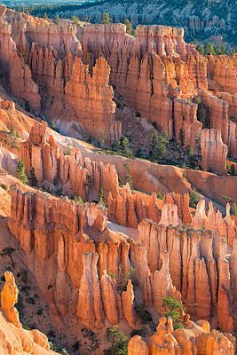 Red Rock Photograph - Bryce Amphitheater by Joseph Smith