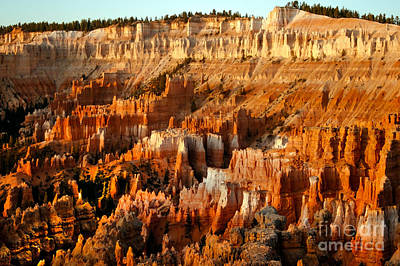 Photograph - Bryce Amphitheater by Robert Bales