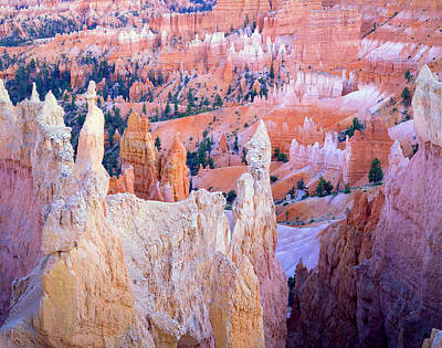Photograph - Bryce At Dusk by Ray Mathis