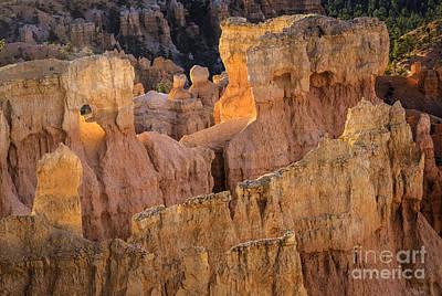 Photograph - Bryce Canyon 1 by David Waldrop