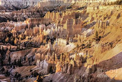 Photograph - Bryce Canyon 3 by David Waldrop