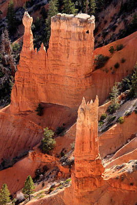 Photograph - Bryce Canyon National Park - Utah - North America by Aidan Moran