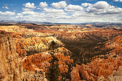 Morning Photograph - Bryce Canyon by Andrew Soundarajan