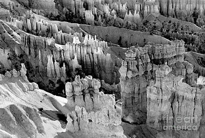 Painting - Bryce Canyon Bw by Cindy McIntyre