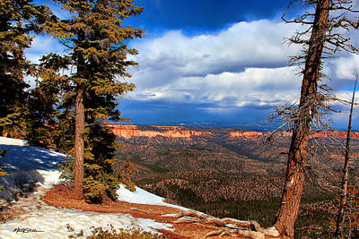 Photograph - Bryce Canyon Cliff Shot 3 by Marti Green