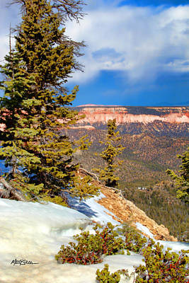 Photograph - Bryce Canyon Cliff Shot 4 by Marti Green