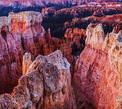 Photograph - Bryce Canyon Early Morning by Vishwanath Bhat