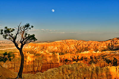 Moon Photograph - Bryce Canyon Evening Moon by Greg Norrell