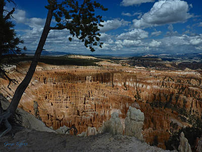 Photograph - Bryce Canyon by George Tuffy
