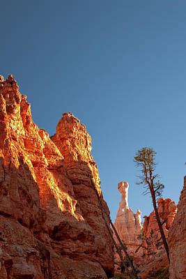 Photograph - Bryce Canyon Hoodoo - Et by R J Ruppenthal
