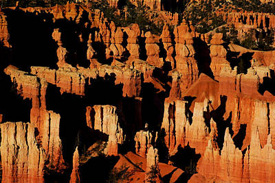 Photograph - Bryce Canyon Hoodoos At Sunset II by Daniel Woodrum