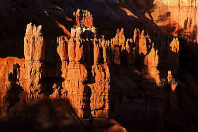 Photograph - Bryce Canyon Hoodoos by Daniel Woodrum
