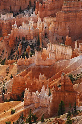 Photograph - Bryce Canyon Hoodoos by Lee Kirchhevel