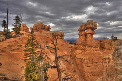 Digital Art - Bryce Canyon Hoodoos by Lori Deiter