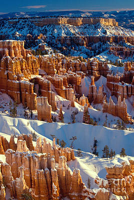 Snow Canyon State Park Photograph - Bryce Canyon In Winter by Inge Johnsson