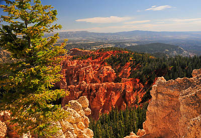 Photograph - Bryce Canyon Landscape by Ginger Wakem