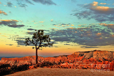 Bryce Canyon Art Print by Leslie Kirk