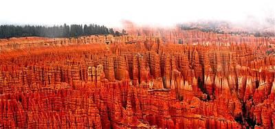 Photograph - Bryce Canyon by Matthew Heller
