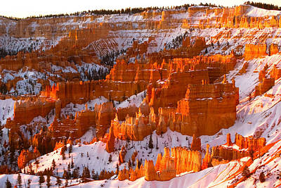 Photograph - Bryce Canyon by Monique's Fine Art