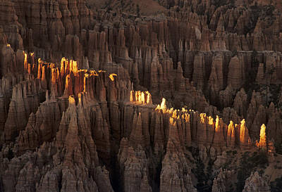 Photograph - Bryce Canyon Morning by Doug Davidson