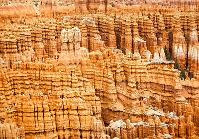 Photograph - Bryce Canyon National Park by Denise Bird