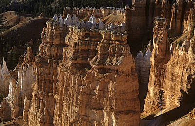 Photograph - Bryce Canyon National Park Hoodo Monoliths Sunset From Sunrise P by Jim Corwin