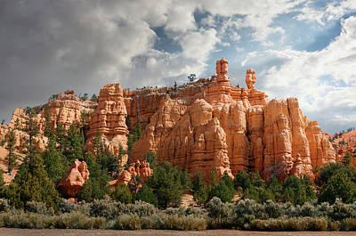 Photograph - Bryce Canyon National Park Hoodoos by Ed Freeman