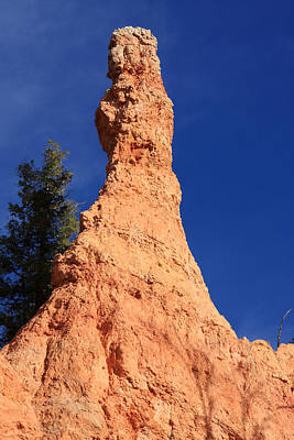 Photograph - Bryce Canyon Pillar by Aidan Moran
