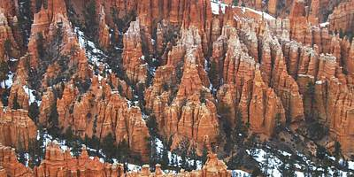 Red Photograph - Bryce Canyon Series Nbr 36 by Scott Cameron