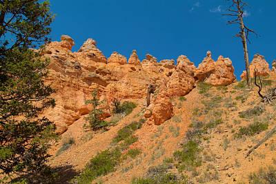 Photograph - Bryce Canyon Spirals  by Richard J Cassato
