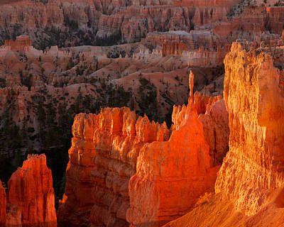 Photograph - Bryce Canyon Sunrise by Steve Kaye