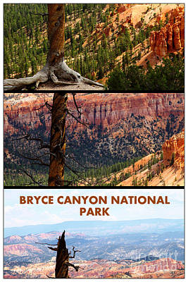 Photograph - Bryce Canyon Triptych by Sophie Vigneault