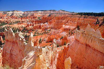 Bryce Canyon Utah Art Print by Matthew Chapman