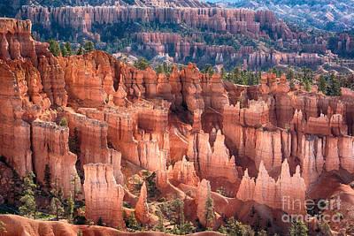 Photograph - Bryce Canyon Utah Views 501 by James BO Insogna