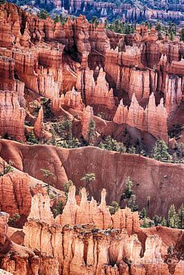 Photograph - Bryce Canyon Utah Views 505 by James BO Insogna