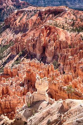 Photograph - Bryce Canyon Utah Views 82 by James BO Insogna