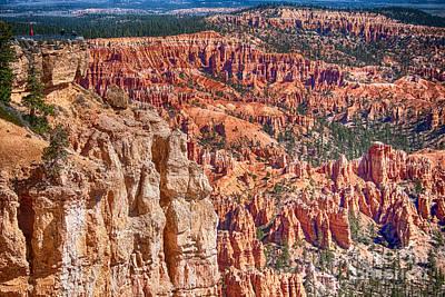 Photograph - Bryce Canyon Utah Views 83 by James BO Insogna