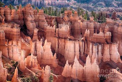 James Insogna Photograph - Bryce Canyon Utah Views 92 by James BO  Insogna