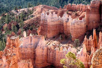 Photograph - Bryce Canyon Utah Views 96 by James BO Insogna