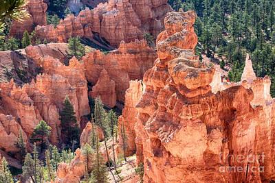 Photograph - Bryce Canyon Utah Views 97 by James BO Insogna